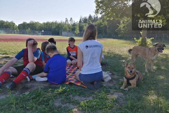 Tierschutz macht Spaß zu Besuch beim inklusiven Sportverein Gauting