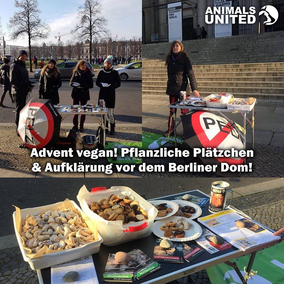 2017 12 3 berlin advent animals united e v. Black Bedroom Furniture Sets. Home Design Ideas