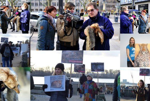 WHAT A WEEK: Von TV-Bericht bis Anti-Pelz-Aktion