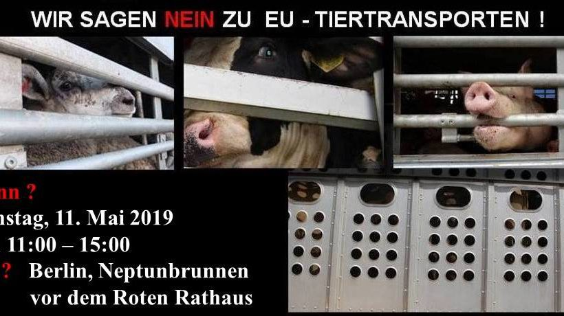 Protestkundgebung gegen EU Tiertransporte