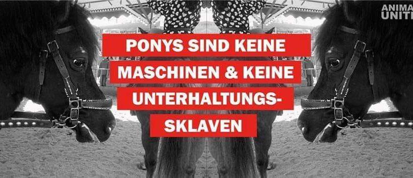 Aktionstag gegen Ponykarusselle Rosenheim