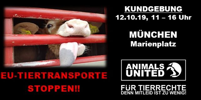 EU Tiertransporte Stoppen