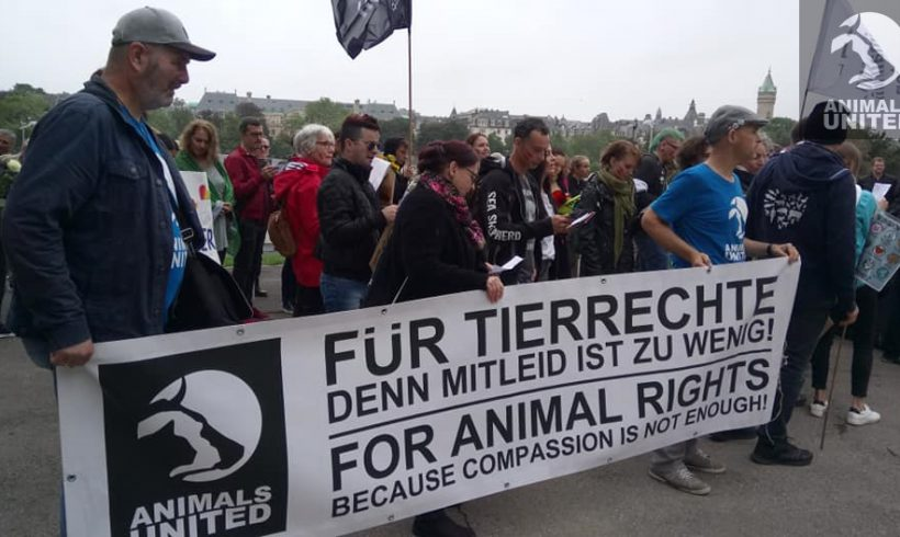 "Animals United beim ""Official Animal Right March 2019"" in Luxembourg"