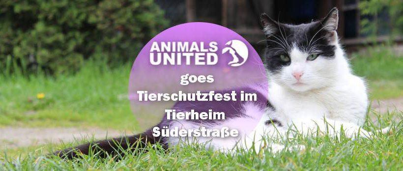 Animals United goes Tierschutzfest Hamburg