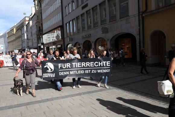 600 Teilnehmer fordern ein Stopp der EU-Tiertransporte