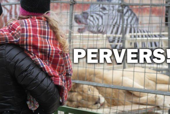 Pervers – vom Verhältnis zwischen Kindern und Tieren