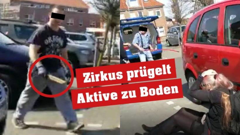 Zirkus prügelt Tierrechtler*innen mit Fäusten und Holzlatten krankenhausreif