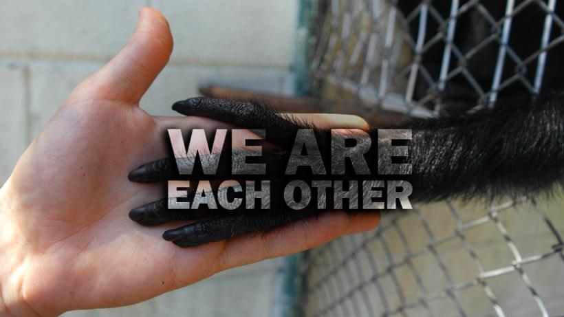 Wir sind einander – Pro-Intersektionalismus