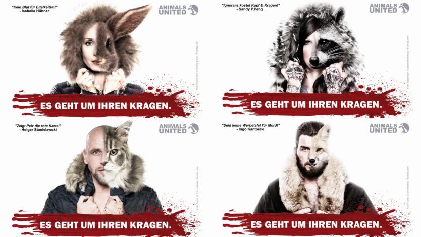 Mit Promi Postkarten Gegen Pelz Holt Sie Euch Animals