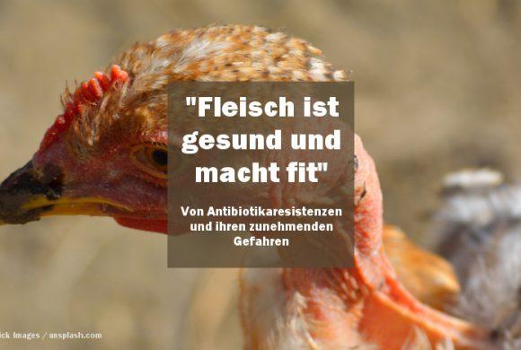 """""""Fleisch ist gesund und macht fit"""" – von Antibiotikaresistenzen und ihren zunehmenden Gefahren"""