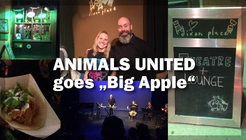 ANIMALS UNITED goes Big Apple: Wir sind alle eins!