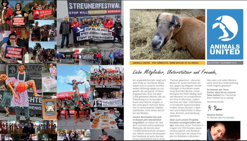 """Unser Vereinsmagazin """"Blickpunkt"""" 2015 ist raus!"""