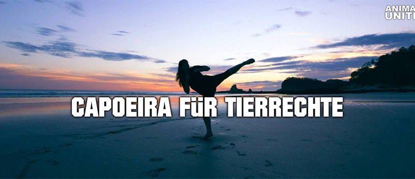 Capoeira für Tierrechte