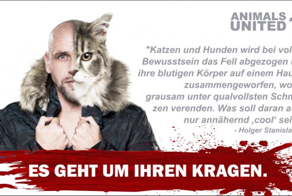 "St. Pauli-Legende Holger ""Stani"" Stanislawski gegen Pelz"
