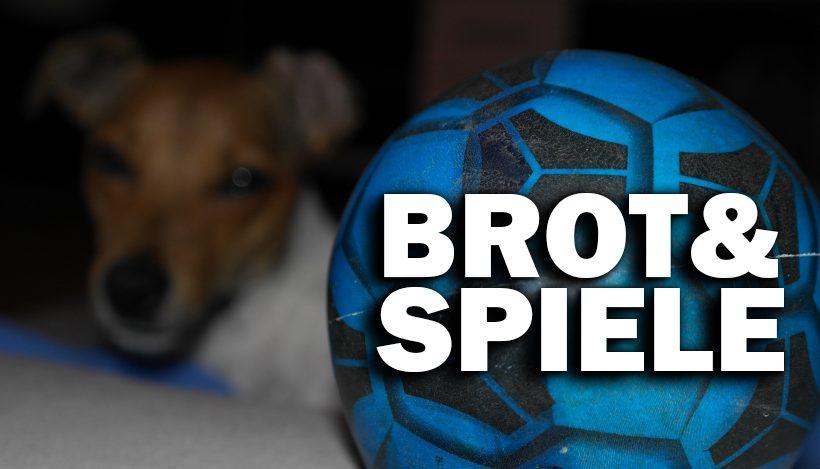 Warum ich meine Zeit lieber Tierrechten als der WM widme