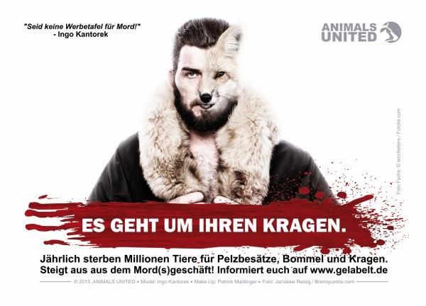 Anti Pelz Karte Ingo Kantorek Animals United Ev