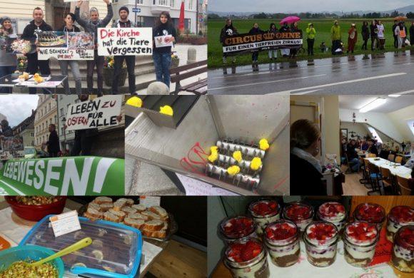 WHAT A WEEK: Von einer Oster-Kreativaktion bis zum veganen Brunch
