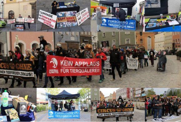 WHAT A WEEK: Von Laufdemo bis Aktionen zum Thema Tierversuche