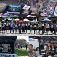 WHAT A WEEK: Von Festival bis Streuneraktionstag