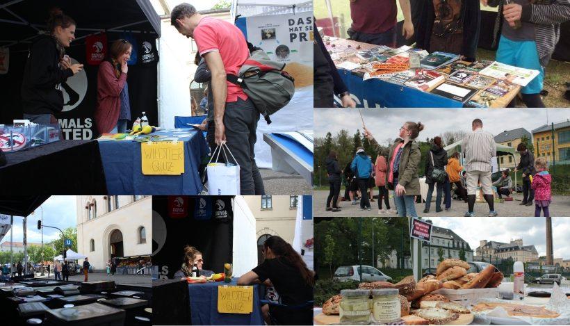 WHAT A WEEK: Vom Frühlingsfest bis Infostände auf Festivals