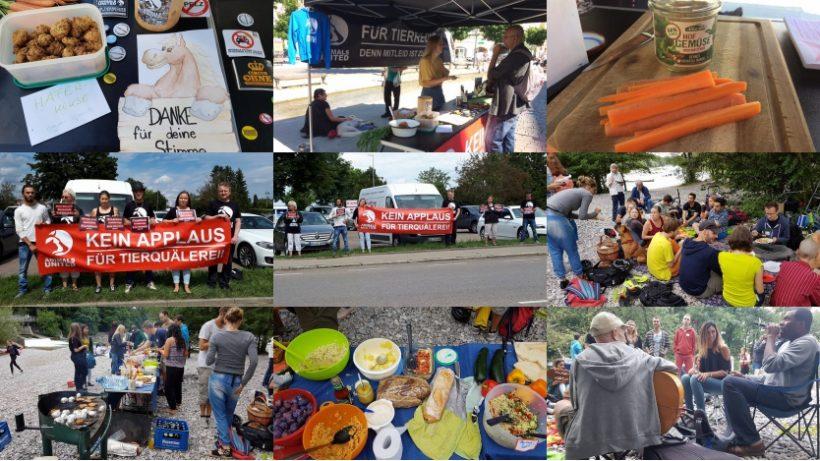 WHAT A WEEK: Von Infoaktion bis Sommerfest