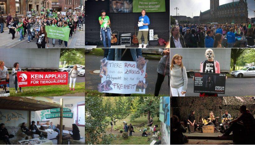 WHAT A WEEK: Von Großdemo bis veganes Fest