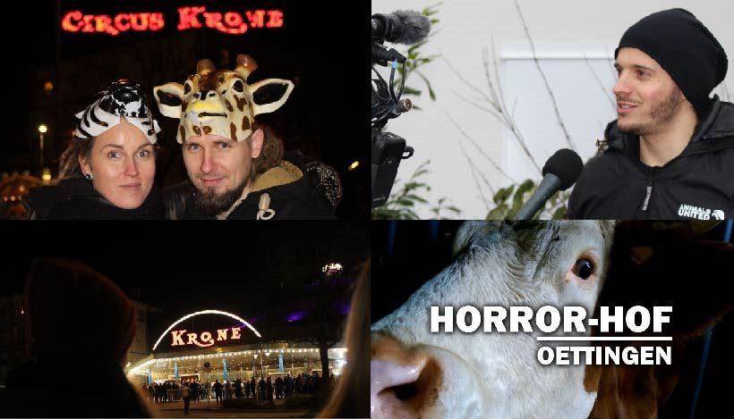 WHAT A WEEK: Von Kreativaktion zur Premiere bis Horror-Hof