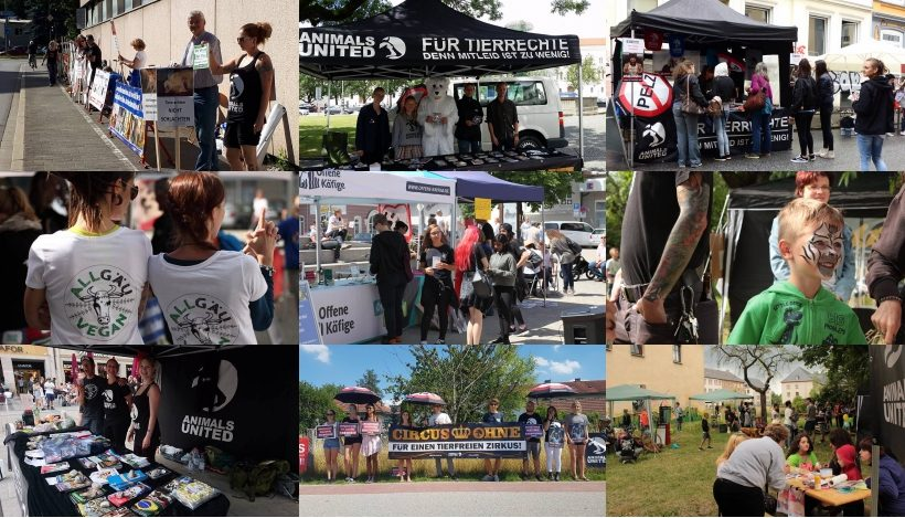WHAT A WEEK: Von 1. veganen Straßenfest bis zu stillem Zirkus-Protest