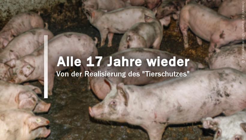 """Alle 17 Jahre wieder – von der Realisierung des """"Tierschutzes"""""""