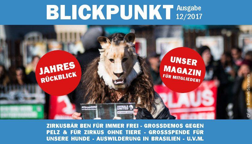 """Unser Vereinsmagazin """"Blickpunkt"""" 2017 ist raus!"""