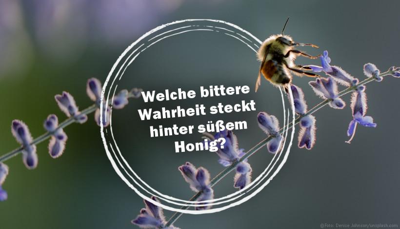 Welche bittere Wahrheit steckt hinter süßem Honig?