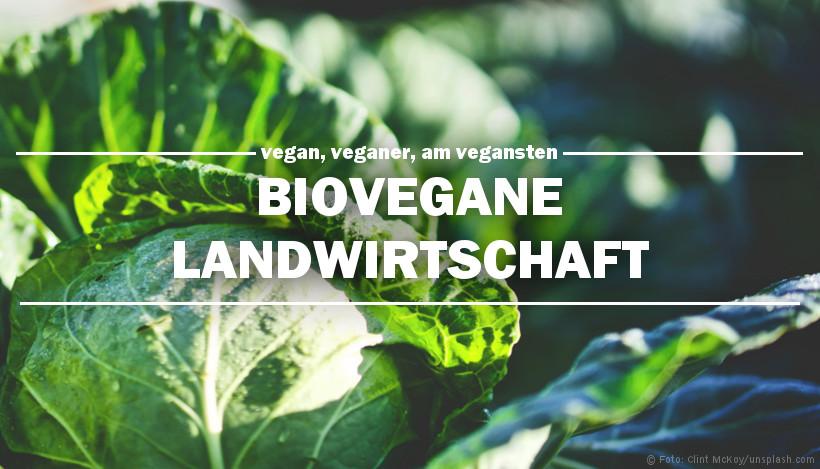 Vegan, veganer, am vegansten: Biovegane Landwirtschaft