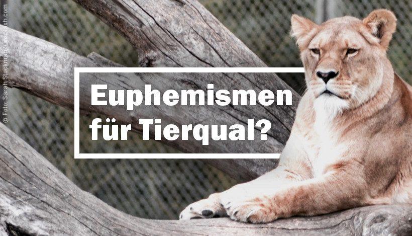 Zoo: Artenschutz & Bildung – Euphemismen für Tierqual?
