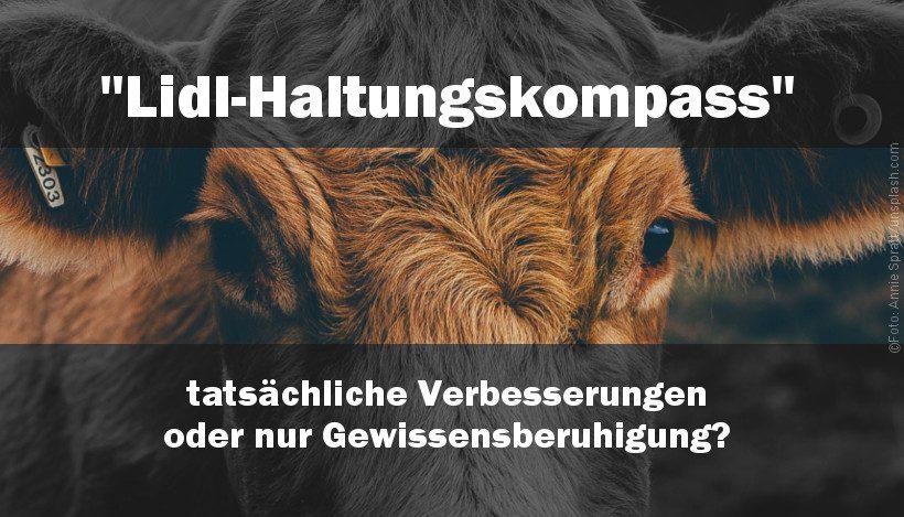 """""""Haltungskompass"""" bei Lidl für mehr """"Tierwohl""""?"""