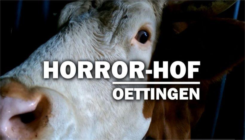 Horror-Hof von Oettingen
