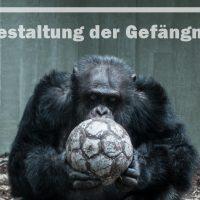 Neugestaltung der Gefängnisse? – Reformbestrebungen der Zoos