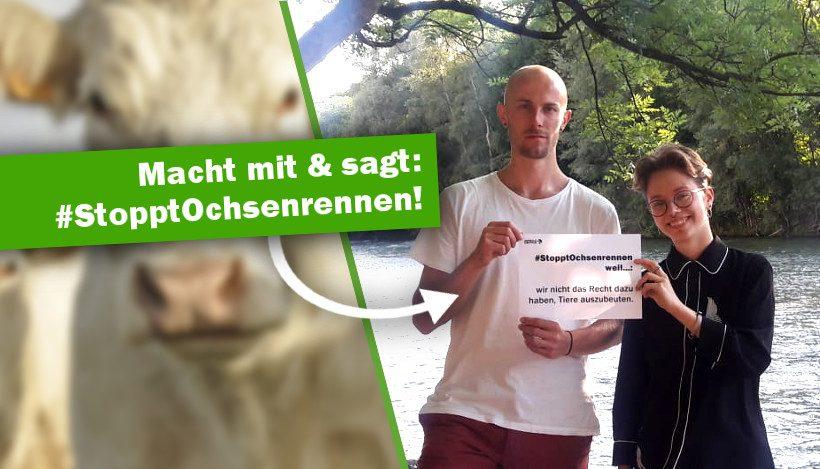 Sagt #StopptOchsenrennen! Online-Aktion