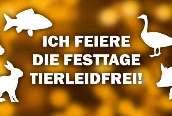 ICH FEIERE DIE FESTTAGE TIERLEIDFREI – Profil- und Titelbild!