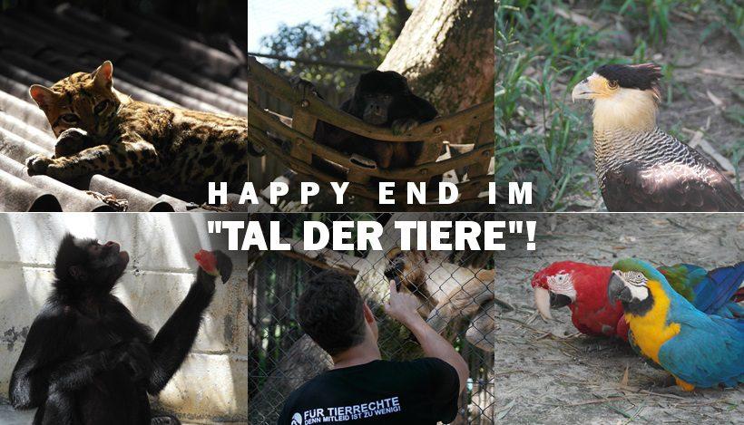 HAPPY END FÜR UNSERE WILDTIERE!