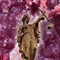 Vor der Anklagebank – doch wer? Tierrechtsaktive vs. Tierausbeutende