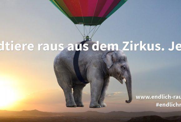 Anhörung zum Wildtierverbot im Deutschen Bundestag
