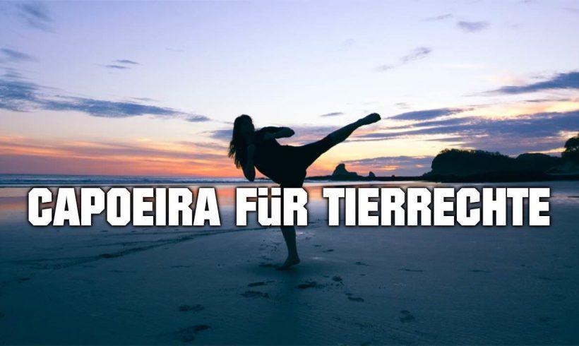 Capoeira für den guten Zweck
