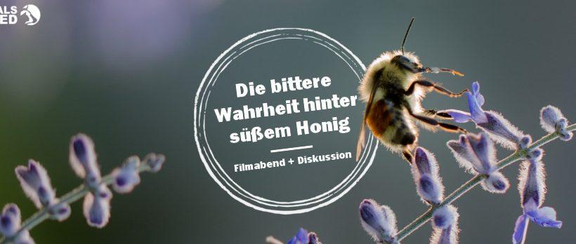 Die bittere Wahrheit hinter süßem Honig – Filmabend