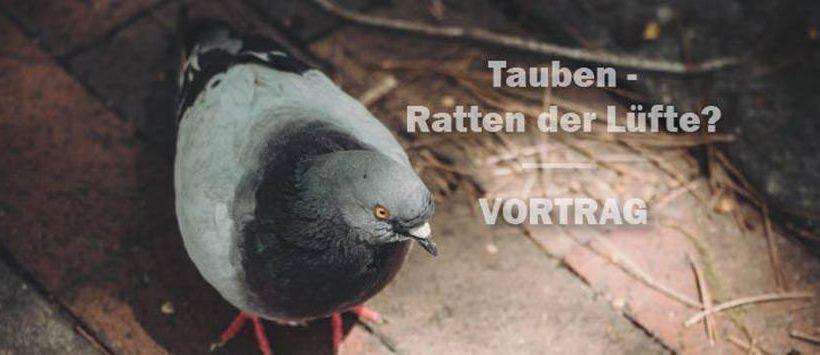 Tauben: Ratten der Lüfte? Vortrag