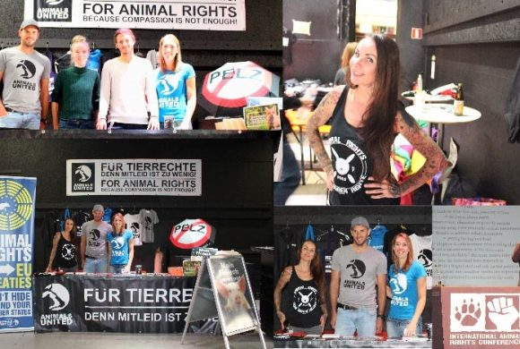 "ANIMALS UNITED goes ""International Animal Rights Conference 2018"""