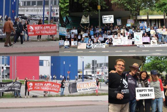 WHAT A WEEK: Protest vor Delfinarium, Apassionata & mehr