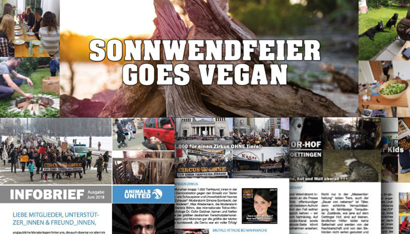 WHAT A WEEK: Vegane Sonnwendfeier & Infobrief 2018!
