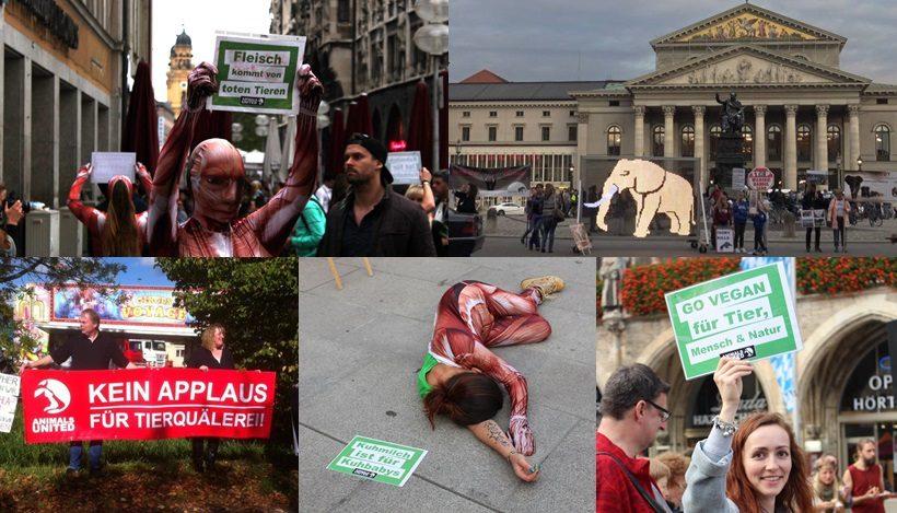 WHAT A WEEK: Vom globalen Marsch für Elefanten bis Infostände