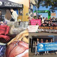 WHAT A WEEK: Von Green World Tour bis Anti-Pelz-Aktionen