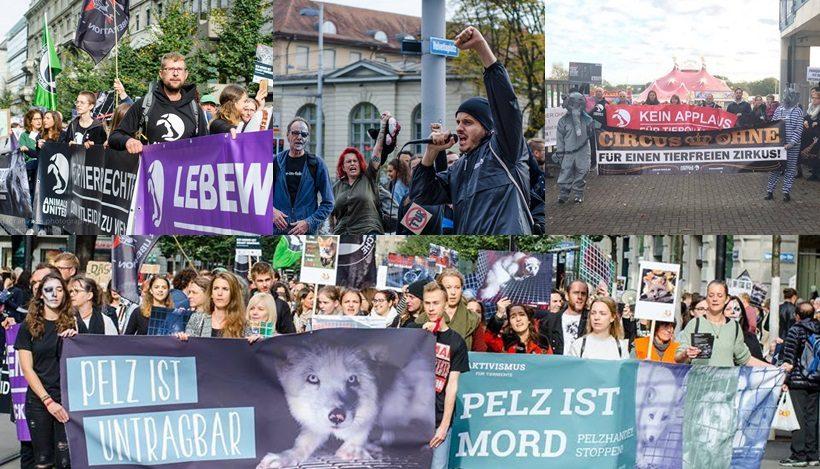 WHAT A WEEK: Proteste für tierleidfreie Mode und Unterhaltung!
